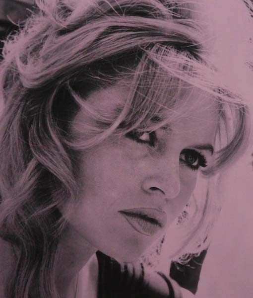 Briget-bardot-new