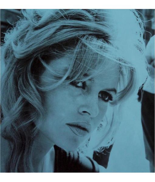 brigitte david studwell blue website