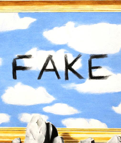 Fake dayz website