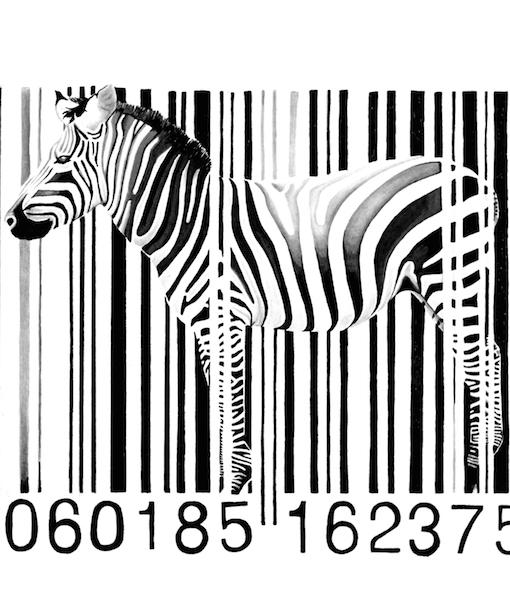 Zebra Barcode website